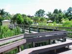Encounter the wildlife at the boardwalk by Lake Davenport