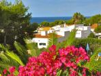 View from the roof terrace towards the sea