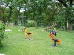Playground and garden for children