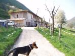 180m private drive that comes off the SP9 Gargnano. A stone farm house with a hay room, stables.