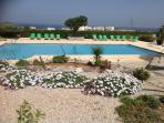 The peaceful large communal pool with spring flowers in bloom & sunbeds for guests