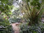 Palm, oleander and fig trees turn this into an enchanted garden