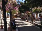 Spring time in Estepona - enjoy this fantastic town