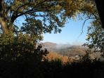 Another view of the pre-Appennine foothills from our lovely farmhouse.