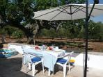 Al fresco dining under the ancient fig tree