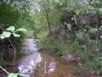 El río Milans