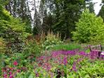 Benmore Garden beautiful all year round- walking distance from lodge