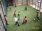 100m2 net covered astro turf play court suitable for football, netball, basketball, bowls, volleybal