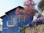 Domus Franca non è un semplice appartamento vacanza, ma un luogo dove rilassarsi e godersi la natura