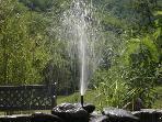 Fountain in garden with koi carp