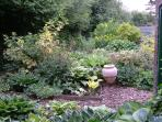 The garden at Holmdale 1