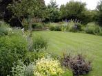 The garden at Holmdale 2