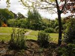 Views into the centre of the garden from the boardwalk