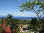 From Nevis