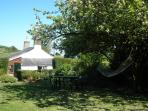 Hammock slung between two apple trees in  the large garden