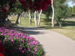 A short walk to the Las Ramblas golf course.