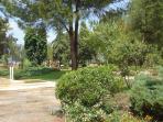 Gardens in Fethiye Town