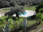 Vista parco privato  con piscina