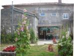 Terrasse avec à gauche cuisine d'été et vue sur le jardin, fauteuils, transats