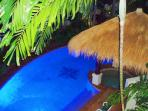 South Pacific Bure Swimming Pool and Spa