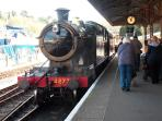Kingswear to Paignton steam railway