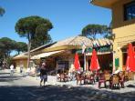 Local bar in Elviria