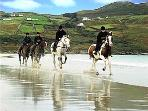 Horse Riding on Dunfanaghy Beach