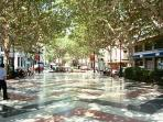 The elegant Paseo of nearby Gandia, excellent shopping and dining.