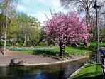 the square of Batignolles  5 minutes walk .. the most romantic place in Paris