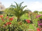 Clube Golfemar has wonderful gardens