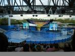 Sea World is just 15 to 20 minutes away!
