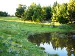 Seasonal water hole, Angels Rest Farm