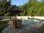 Grande piscine avec une plage dans un écrin de verdure avec bambous géants