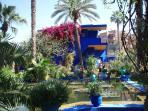 Visit the stunning Majorelle Gardens in Marrakech