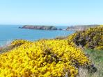 Gateholm Island from the Pembrokeshire Coastal Path