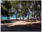 Marjan Park-Forrest, 5 min walking from apartment