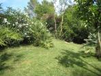 Lower 'secret' garden area
