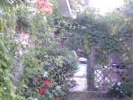 jardin avec terrasse et piscine expo sud ouest