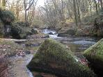 Golitha Falls - A five minute drive away