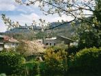 Belesta village view in spring