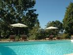 Sparkling pool with plenty of comfy loungers and parasols