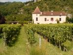 Enjoy a wine tasting at a Cahors vineyard - one of the 100 + listed in our Welcome Book - and more