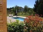 garden with the pool