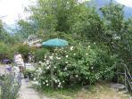 terrazza fiorita -rose