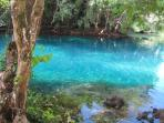 Cool, crystal clear Matevulu Blue Hole on Espiritu Santo Island