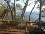 la vegetazione con la vista del  golfo dello Zuccale