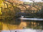 Autumn. Try and Catch all the seasons. Beaver Pool. The river Conwy just below the Hall