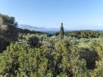 angoli di paesaggio sopra la casa, lungo la strada bianca che va sulle montagne. In fondo Cefalonia