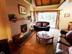 Cosy log fire in living room