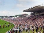 Horse racing at Glorious Goodwood